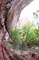 小さな滝の内側が登路