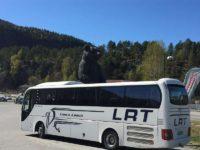 巨大なクマがバスに肘掛け?