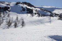 こんな所にもスキーのトレースが